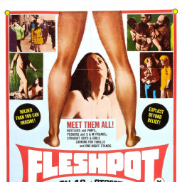 Most Similar Movies to Fleshpot on 42nd Street (1973)